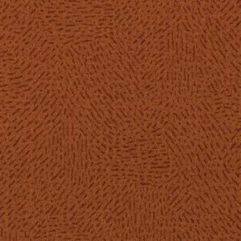 296003 Tangerine