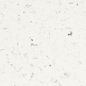 68001 White Shell