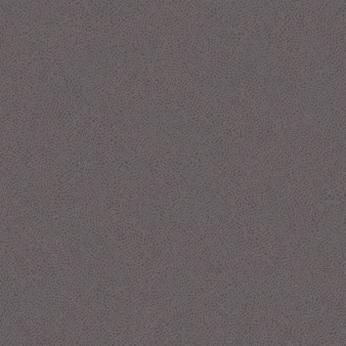 Neutral grey dark 434239