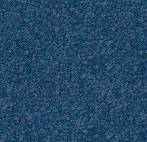 1306 bailey blue