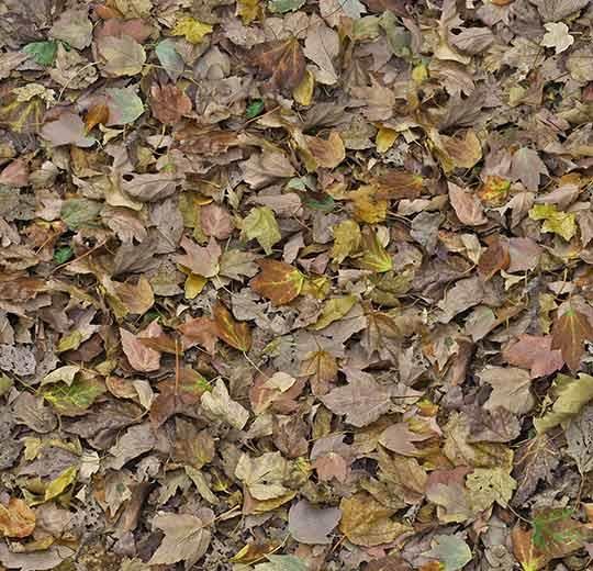 yaprak desenli leke tutmayan halı - otel halısı