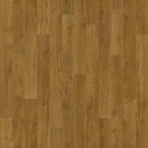 010033 English oak