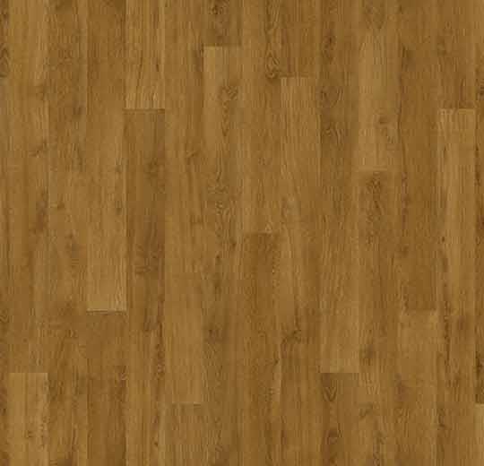 010053 golden oak