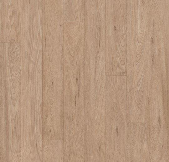 10432 grey washed oak
