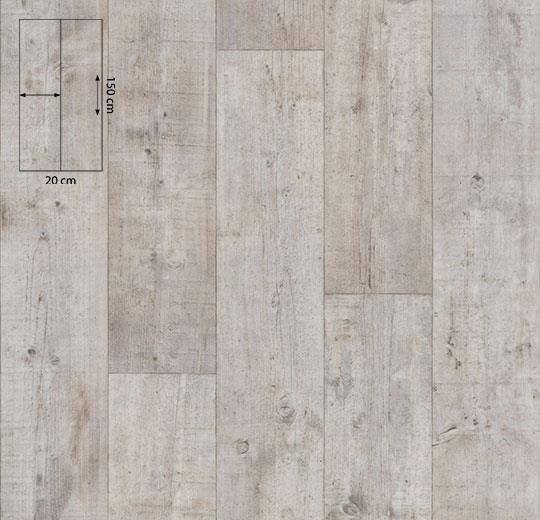 11222 white pine