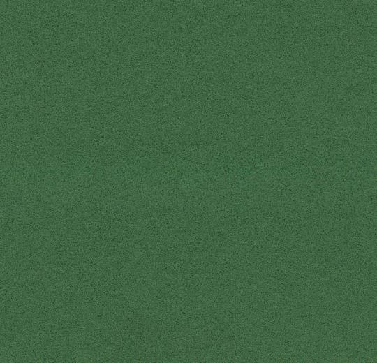 211088-232088 evergreen