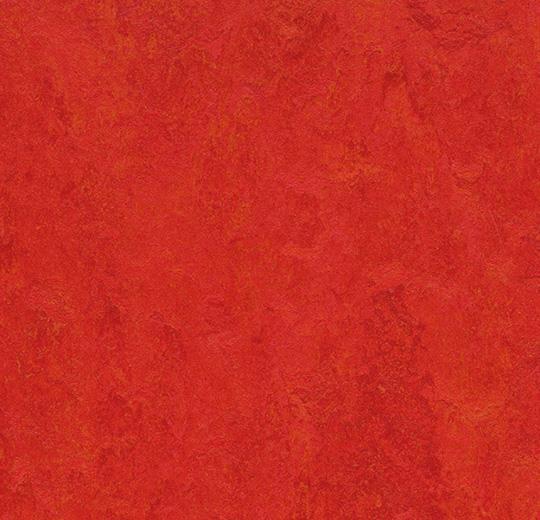 3131-313135 scarlet