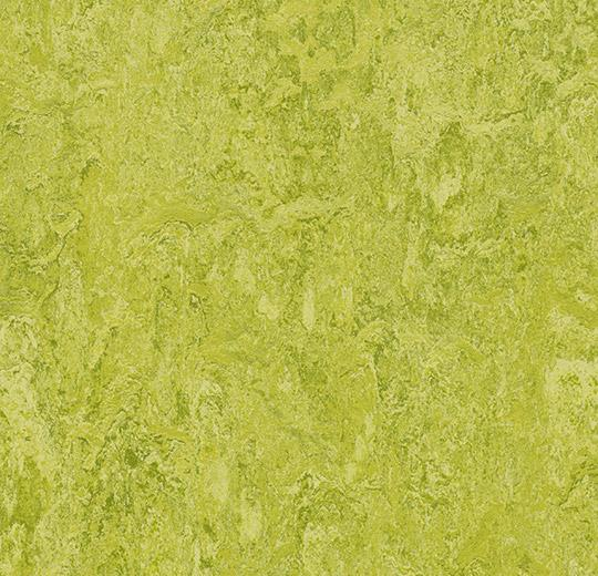 3224 20 Chartreuse