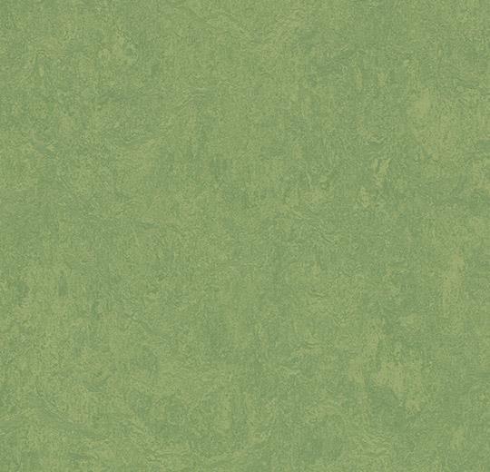 3260-326035 leaf