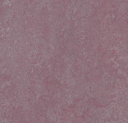 3272-327235 plum