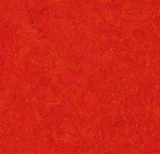 333131 scarlet