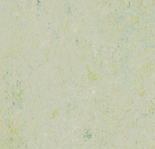 3430-343035 salsa verde