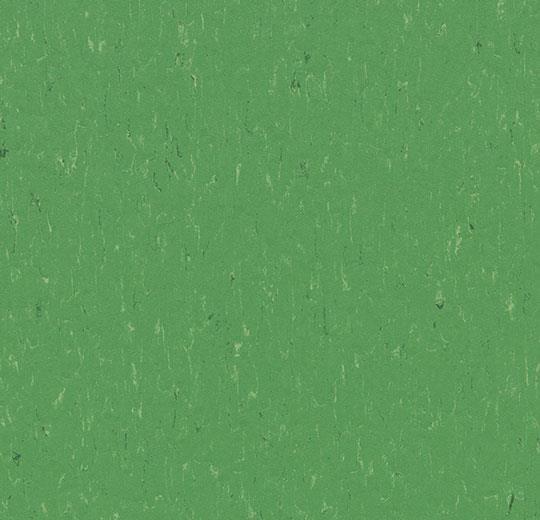 3647-364735 nettle green