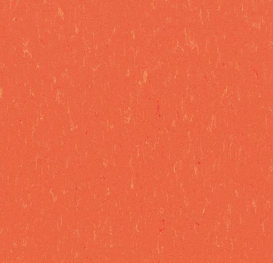3651-365135 zinnia