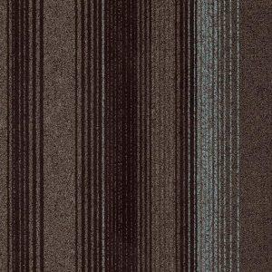 3808 arabica