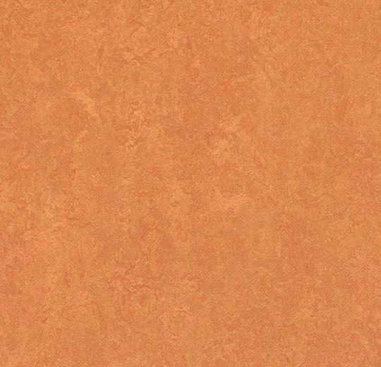 3825 25 African Desert