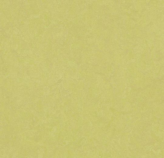 3885-388535 spring buds