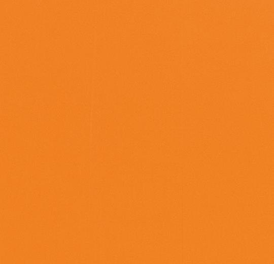 430806-330806 abricot