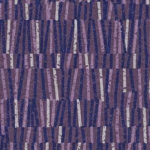 540014 Vector Grape