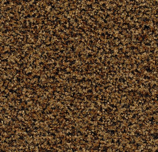 5716 masala brown