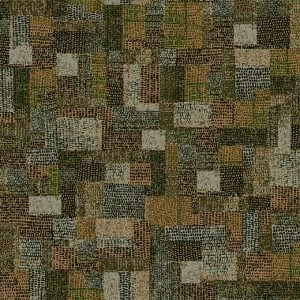 610002 Collage Moss