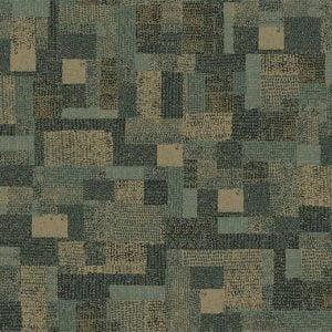 610015 Collage Lichen