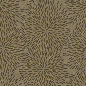 660003 Firework Flax