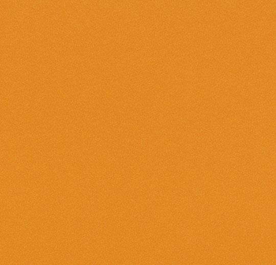 9017 fox orange