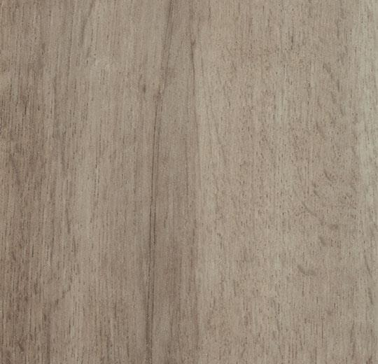 9056 grey autumn oak