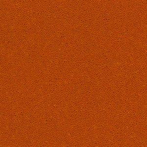 910060 clementine