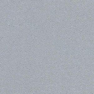 910074 gull grey