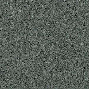 9171 greyhound