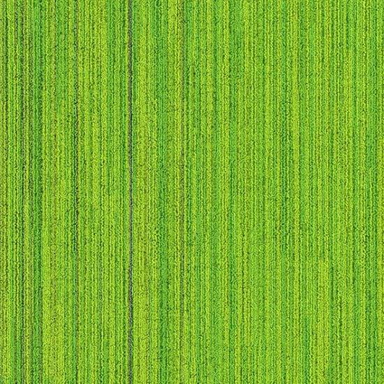 neon yeşil karo halı