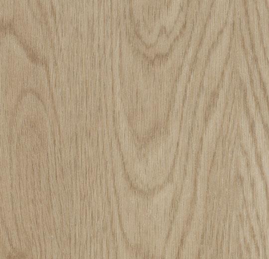 cc60064 whitewash elegant oak