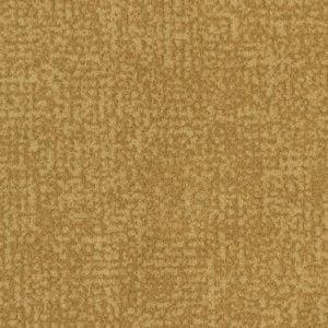 s246013-t546013 amber