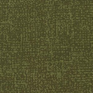 s246021-t546021 moss