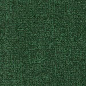 s246022-t546022 evergreen