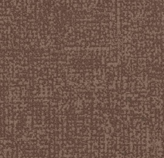 s246029-t546029 truffle
