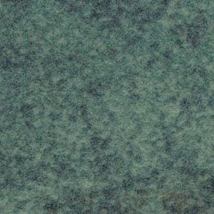 s290009-t590009 moss
