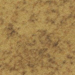s290027-t590027 amber