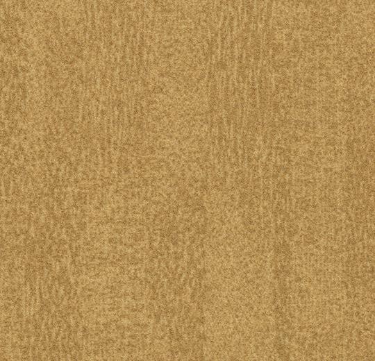 s482022-t382022 amber