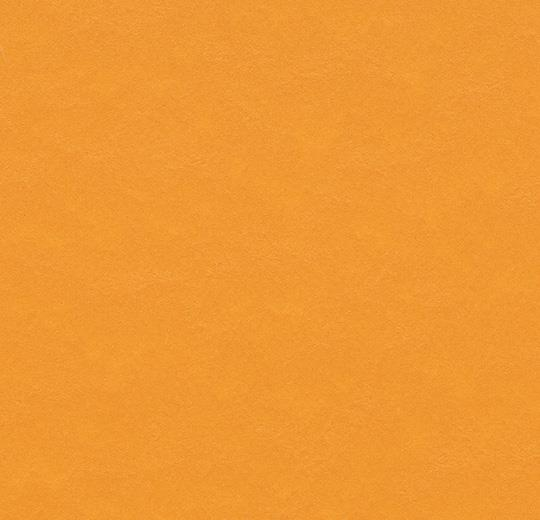t3354 pumpkin yellow