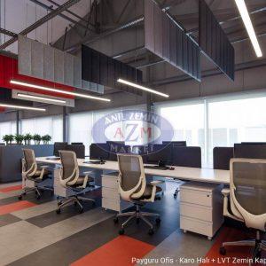 payguru ofis 7