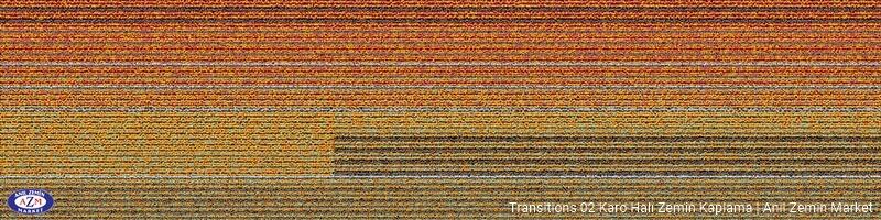 Transitions 2-D