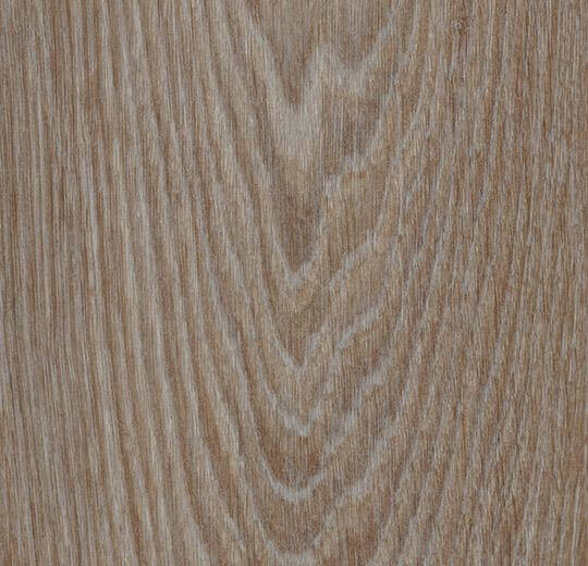 63410CL5 hazelnut timber