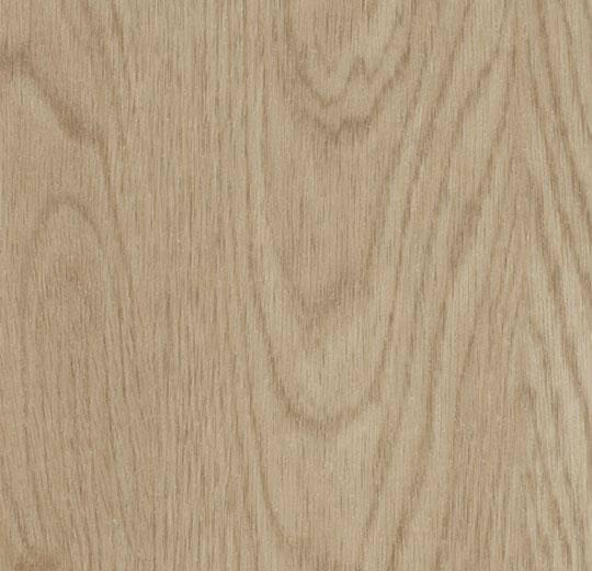 60064CL5 whitewash elegant oak