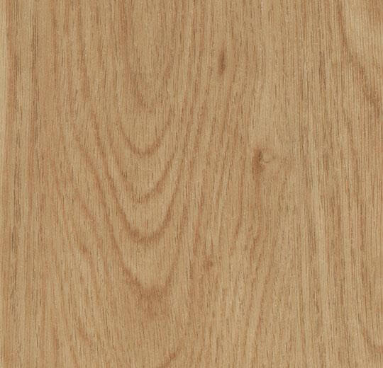 60065CL5 honey elegant oak