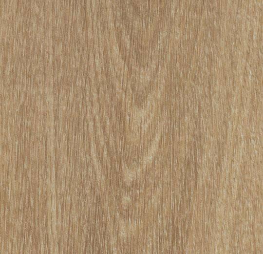 60284CL5 natural giant oak