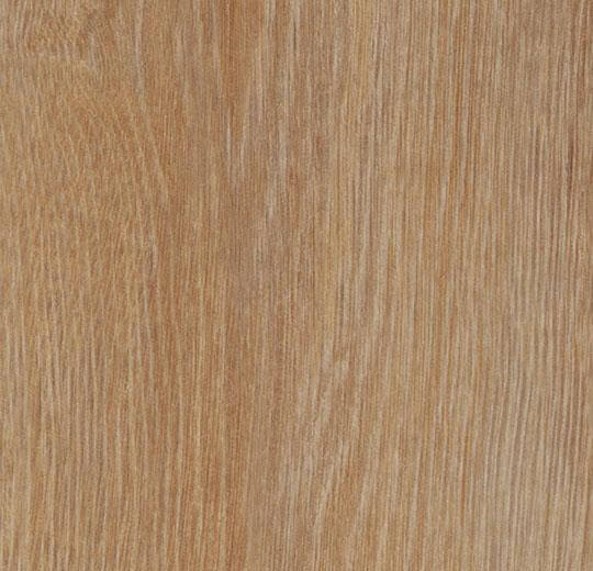 60295CL5 pure oak
