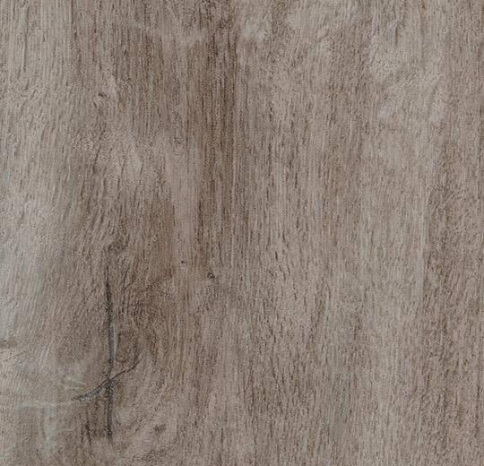8WHA02-3WHA02 dusky harvest oak